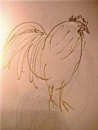 Birdpict0113